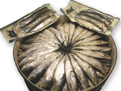 sardina-arenque